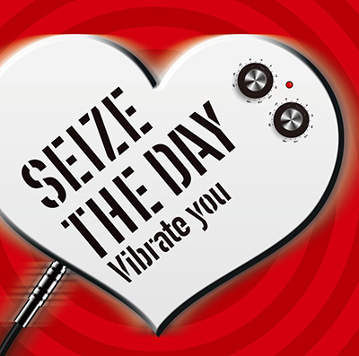 SEIZE THE DAY「Vibrate you」