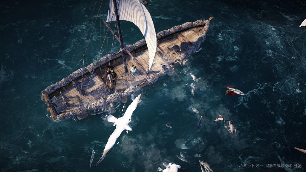 魚群とムントンクジラ