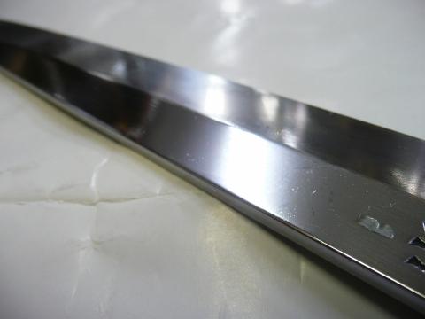 P1100115 (480x360)