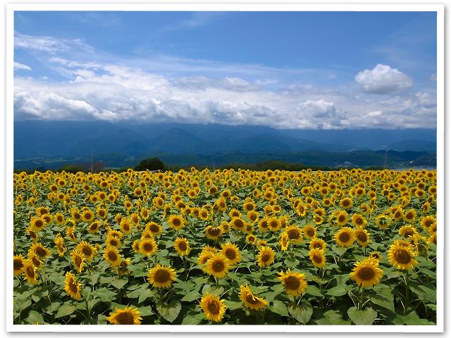 八ヶ岳ぷち旅行①