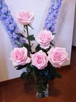 20160413花