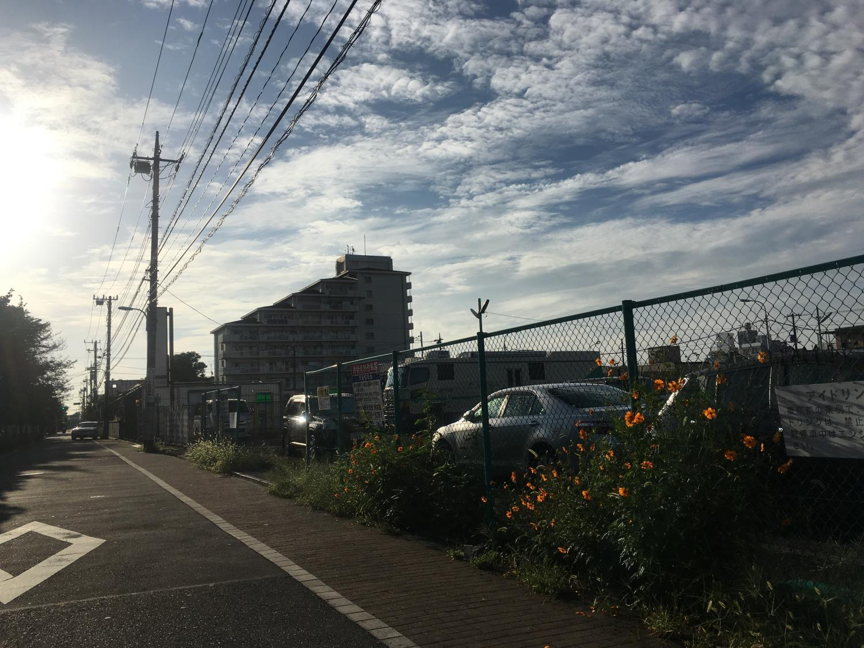 台風後の朝