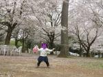 房総のむらの桜