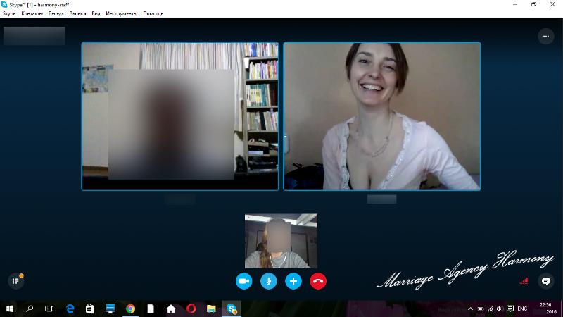 20160723_skype_meeting_4.jpg