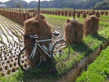 AMCycling2016092401.jpg