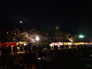 moon20160422sakura04.jpg