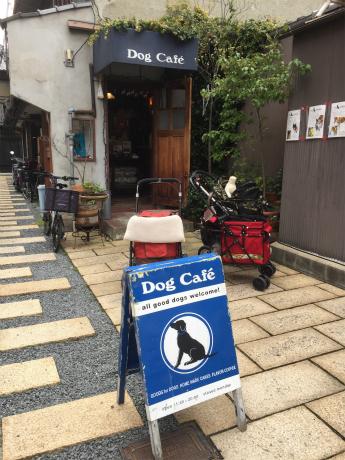 KYOTO ドッグカフェ