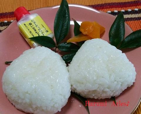 HMレモン塩のおむすび