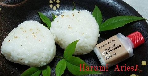 HM焼き肉塩のおむすび
