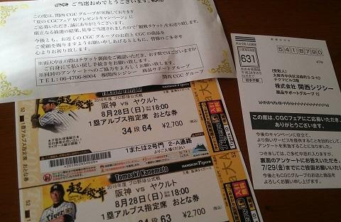 平成28年7月20日阪神チケット