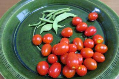ミニトマトと隠元