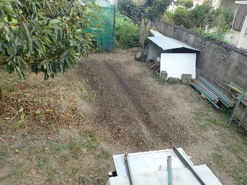 ジャガイモ植える場所