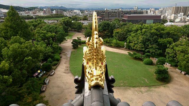 金の鯱 1
