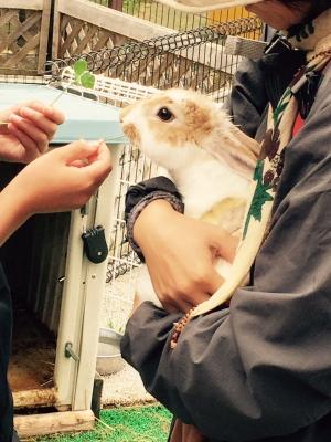 ウサギと触れる3