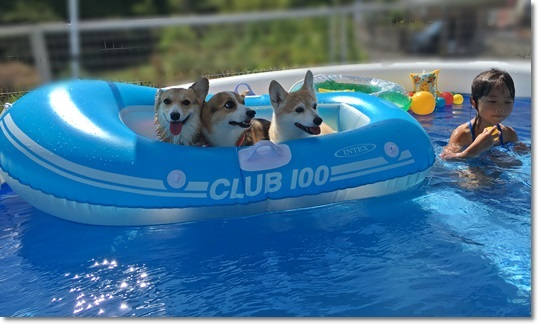 プール遊び1
