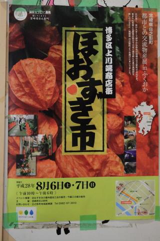 20160803hoozuki.jpg
