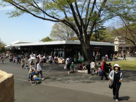 160409higashiyama (2)