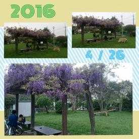 20160426公園