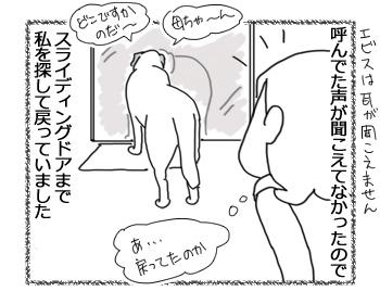 羊の国のラブラドール絵日記シニア!!「かわいい間」2