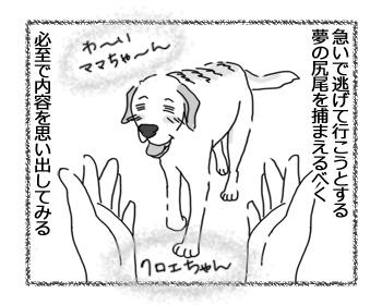 羊の国のラブラドール絵日記シニア!!「夢の尻尾」2