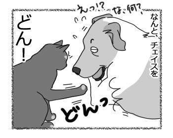 羊の国のラブラドール絵日記シニア!!「なにドン!?」3