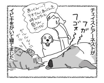 羊の国のラブラドール絵日記シニア!!「寝過ごしたフタリ」4