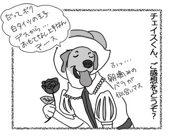 04092016_dog10.jpg