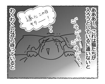 羊の国のラブラドール絵日記シニア!!「寒がりボーイ」2