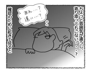 羊の国のラブラドール絵日記シニア!!「寒がりボーイ」3