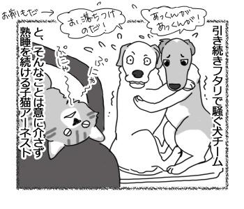 羊の国のラブラドール絵日記シニア!!「なんて聞こえるの!?」4