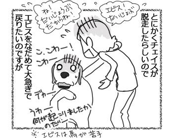羊の国のラブラドール絵日記シニア!!「チェイス脱走!?」3