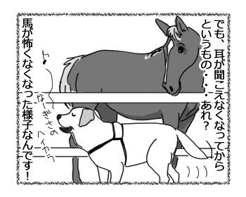羊の国のラブラドール絵日記シニア!!「エビスの苦手克服!?」2