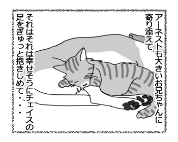 羊の国のラブラドール絵日記シニア!!「猫語と犬語」2