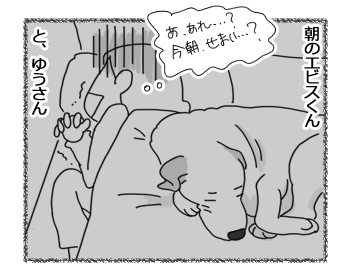 11072016_dog3m.jpg