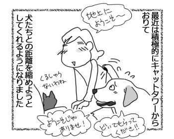羊の国のラブラドール絵日記シニア!!「縮まる距離」4