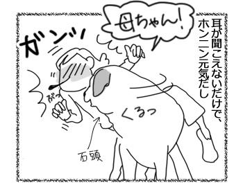 羊の国のラブラドール絵日記シニア!!「ヤングアッとハート」2