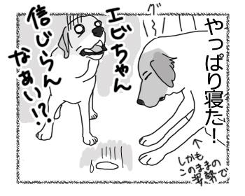 羊の国のラブラドール絵日記シニア!!「チェイスよ、マジか!?」6