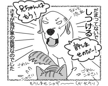 羊の国のラブラドール絵日記シニア!!「子犬認定」4