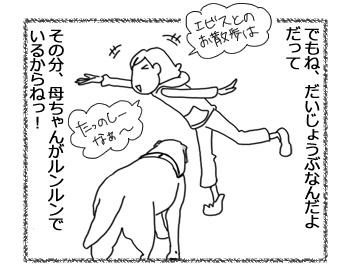 羊の国のラブラドール絵日記シニア!!「シニアのお散歩盛り上げ隊!」4