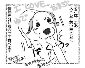 羊の国のラブラドール絵日記シニア!!「犬とゆで卵と私」3