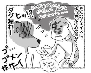 羊の国のラブラドール絵日記シニア!!「犬とゆで卵と私」6