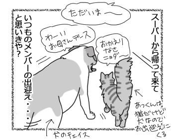 羊の国のラブラドール絵日記シニア!!「はじめての共同作業」1
