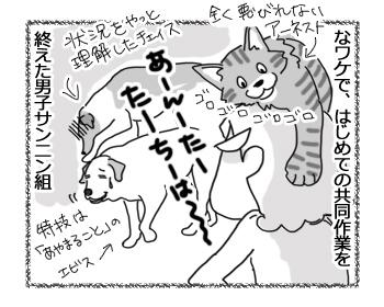 羊の国のラブラドール絵日記シニア!!「はじめての共同作業」4