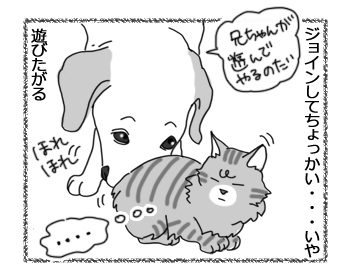 羊の国のラブラドール絵日記シニア!!「世界一わかりにくい嫉妬」2