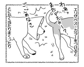 羊の国のラブラドール絵日記シニア!!「意外な利用法」1