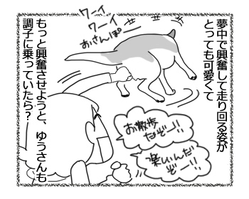 羊の国のラブラドール絵日記シニア!!「そんなお年頃」2