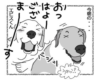 羊の国のラブラドール絵日記シニア!!「男子(ダンスィー)のリハビリ」3