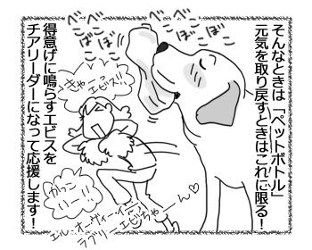 羊の国のラブラドール絵日記シニア!!「昨日の今日」2
