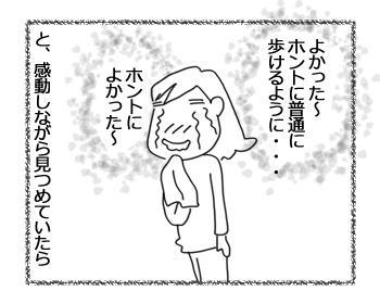 羊の国のラブラドール絵日記シニア!!「主演男優賞」3