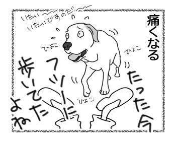 羊の国のラブラドール絵日記シニア!!「主演男優賞」5